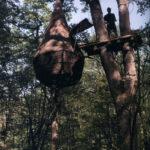 """Cabane goutte, 2008.  Crédit Photo. J.B. Lafitte. / """"Le Chêne, arbre roi de Gascogne / Collection particulière Eric Pouget, Société Le Vert en l'air, Pavie (32)."""